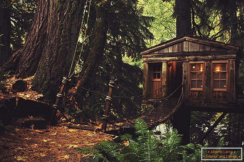Treehouse in Seattle (Seattle, Stany Zjednoczone)